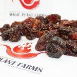 Dried Red Savina Pods