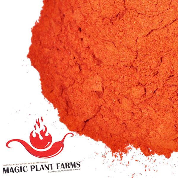 Scorpion Powder | Scorpion Pepper Powder