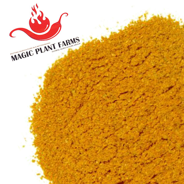 Yellow Scotch Bonnet Powder | Scotch Bonnet Yellow Powder
