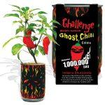 Ghost Chili Pepper Planter